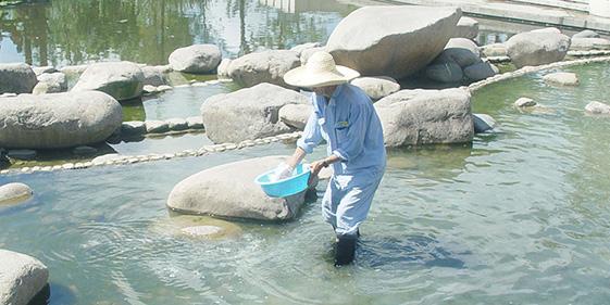 泓宝-19年水处理经验