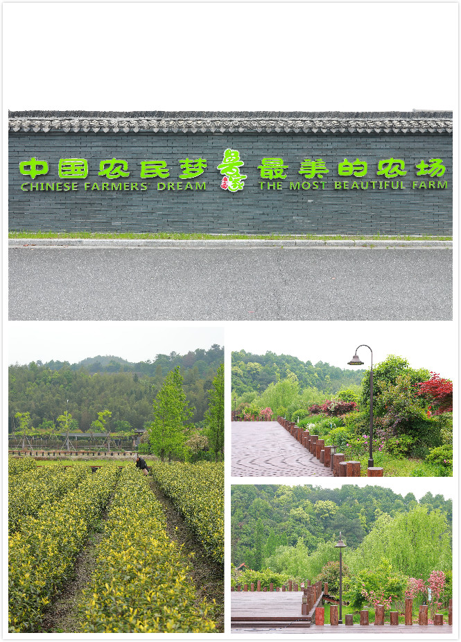 2、鲁家村风景(合成)
