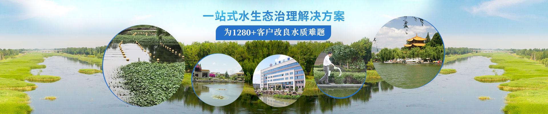 泓宝-提供一站式水生态治理解决方案  为1280+客户改良水质难题