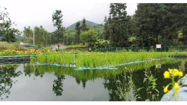景观水处理设备工作原理是什么