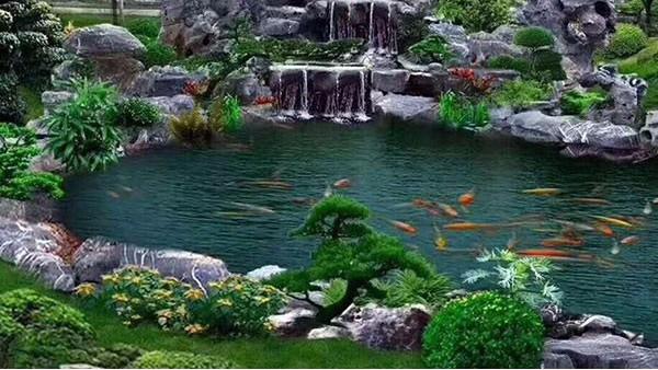 水生态系统保护与修复的现实意义有哪些