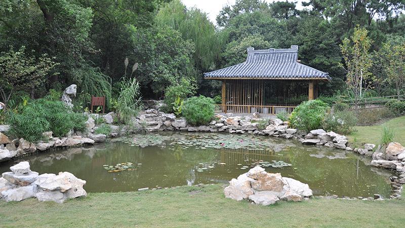上海泓宝微生物生态治水走向新未来