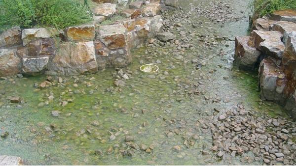 上海泓宝生态人工景观湖及河道治理生态修复技术