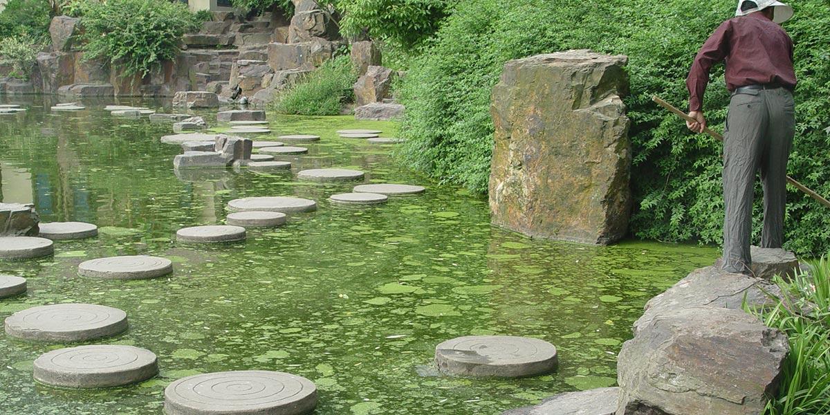 上海市曲阳公园景观水系污染治理方案